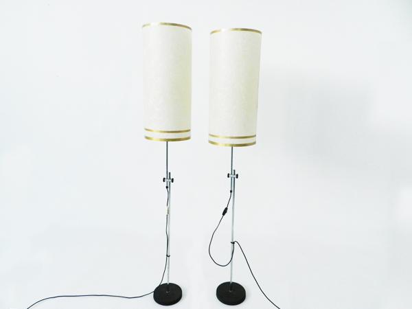 Pair of adjustable floor lamps