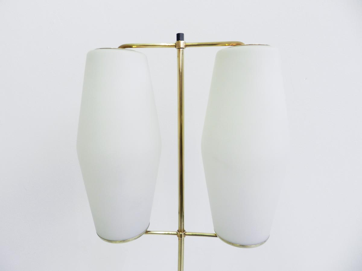 Elegant floor lamp