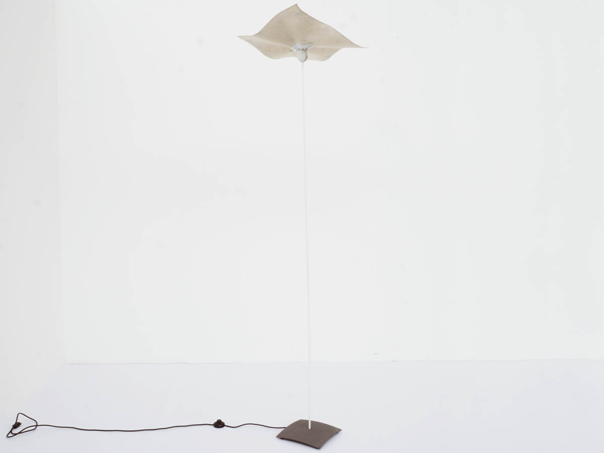 """Area Curvea"" Floor Lamp"