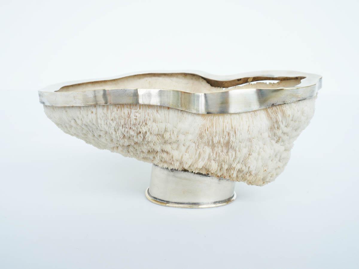 Ciotola d'Argento in Corallo Bianco